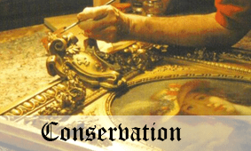 Click here to go to Conservation